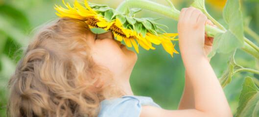 Slik kan du få sensitive barn til å blomstre