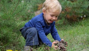Når barn får bildekk, tepper og rør, kan de leke i timesvis i barnehagen