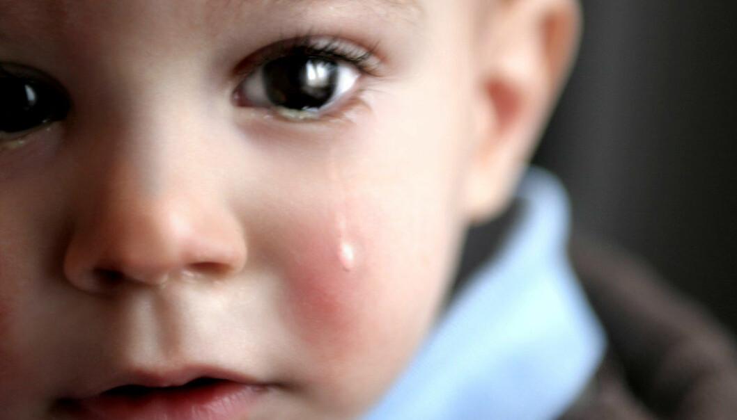 Når voksne i barnehagen forstår barns følelser, lærer barna å vise omsorg og utvikler sosiale kompetanse. Vi kan ikke forvente at barn viser empati og respekt for andre, når vi ikke gjør det selv, skriver artikkelforfatteren. Illustrasjonsfoto: Fotolia.com