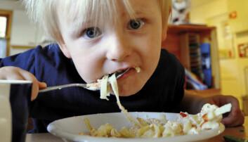 – Barnehagebarn trenger ikke gourmetmat