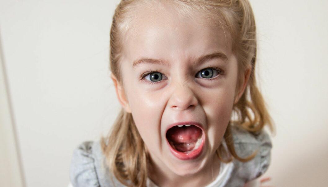 Vi må ikkje sjå på sinne og aggresjon som to sider av same sak, meiner barnehageforskar Liv Torunn Grindheim. Da kan bodskapen barnet forsøker å formidle, om at noko er urettferdig eller krenkjande, stå i fare for ikkje å nå fram Illustrasjonfoto: Fotolia.com