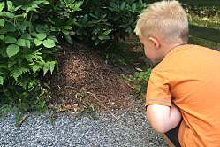 Barn som mestrer naturen, er tryggere