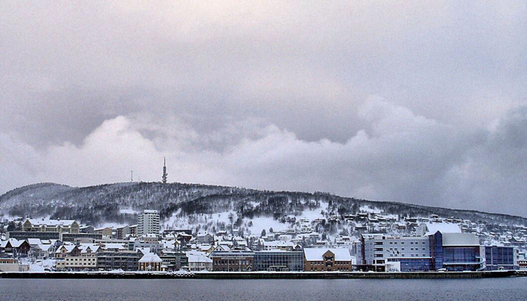 Heggen og Stangnes videregående skoler i Harstad skal slås sammen til én skole i et nytt bygg. Nå pågår striden om hvor den skal ligge. Ill.foto: Wikimedia Commons