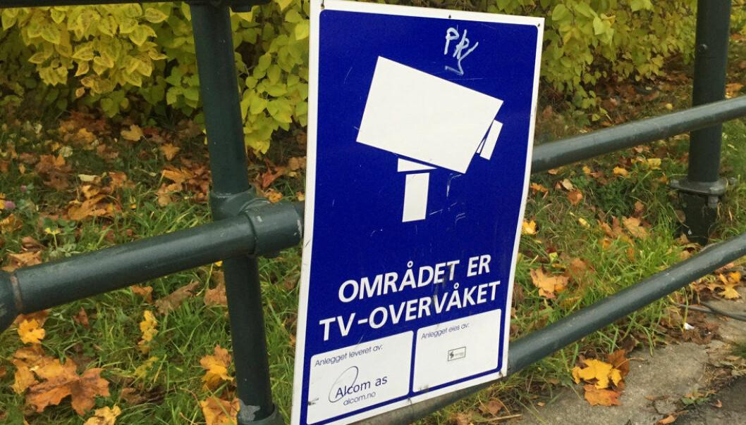 Etter gjentatte episoder med hærverk skal Trondheimspolitikerne vurdere kameraovervåking ved byens skoler. Mobbeombud Gitte Franck Sehm mener at politikerne bør undersøke grundig hva årsakene til hærverket kan være, i stedet for å sette inn tiltak på symptomnivå. Ill.foto: Paal Svendsen.