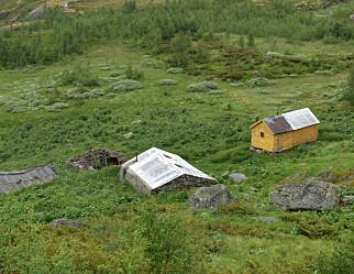 Norsklærerens rop på bærekraft
