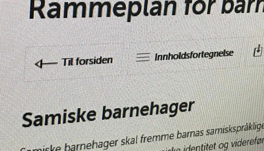 Nasjonalt satses det på høyere kvalitet i barnehagene. Sametinget satser på å styrke kvaliteten i samiske barnehager, skriver sametingsråd Mikkel Eskil Mikkelsen. Ill.foto: Redaksjonen