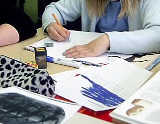 Regjeringen og Udir overser 65000 elever i norsk grunnskole