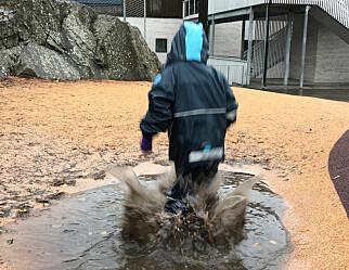 Barnehagesektoren – for deg som savner det ville vesten