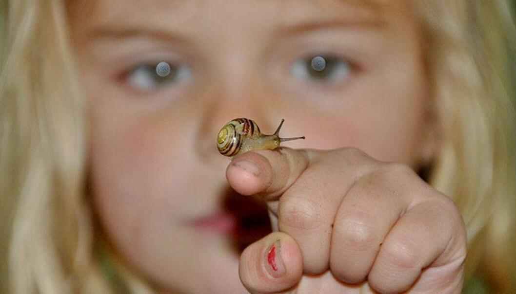 Barn må på andre steder enn ved pulten i klasserommet få utforske, undre seg, reflektere, skape og samarbeide for å opprettholde hans lærelysten. Foto: Paal Svendsen