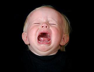 300 småbarn skal stresstestes