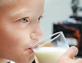 Flere skolebarn velger bort vanlig melk - de vil ha melk med smak