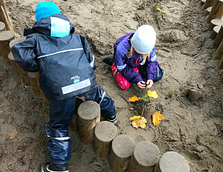Departementet ønsker undersøkelse av overføringer på 45 millioner kroner fra Norlandias barnehager