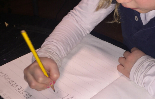 Udir fant regelbrudd ved nær alle friskolene de undersøkte i fjor
