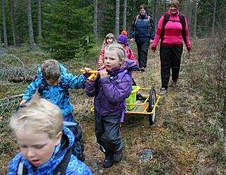 La barna leke i fred, er oppfordringen fra forskere