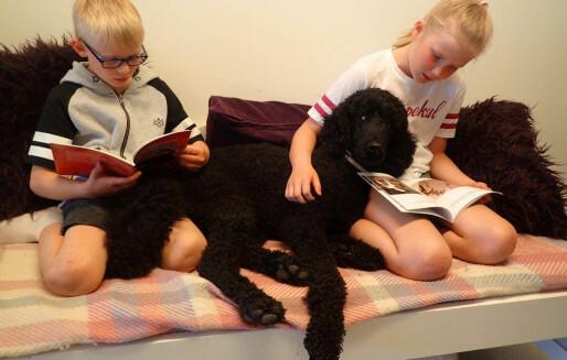 Lesehunden Echo har god innvirkning på motivasjonen for lesing