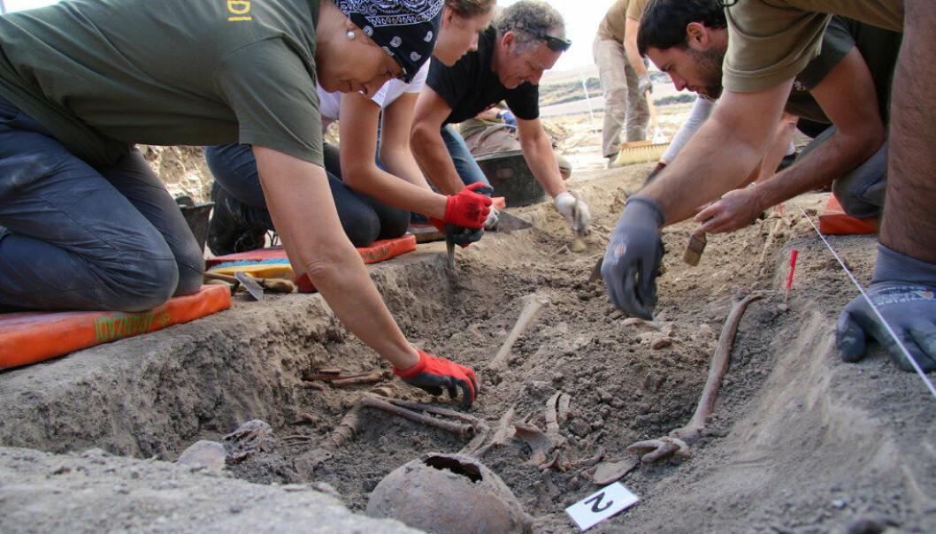 Skjelettet av en lærer, skutt av Francos menn, kommer til syne i et massegrav i Cobertelada i Spania. Foto: Ingebjørg Jensen