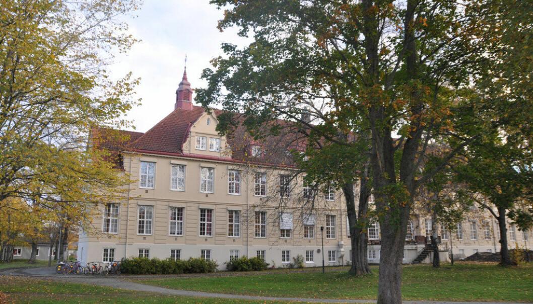Dronning Mauds Minne Høgskole i Trondheim har hatt bra økning de siste årene i antall personer som søker om studieplass. Foto: Paal Svendsen