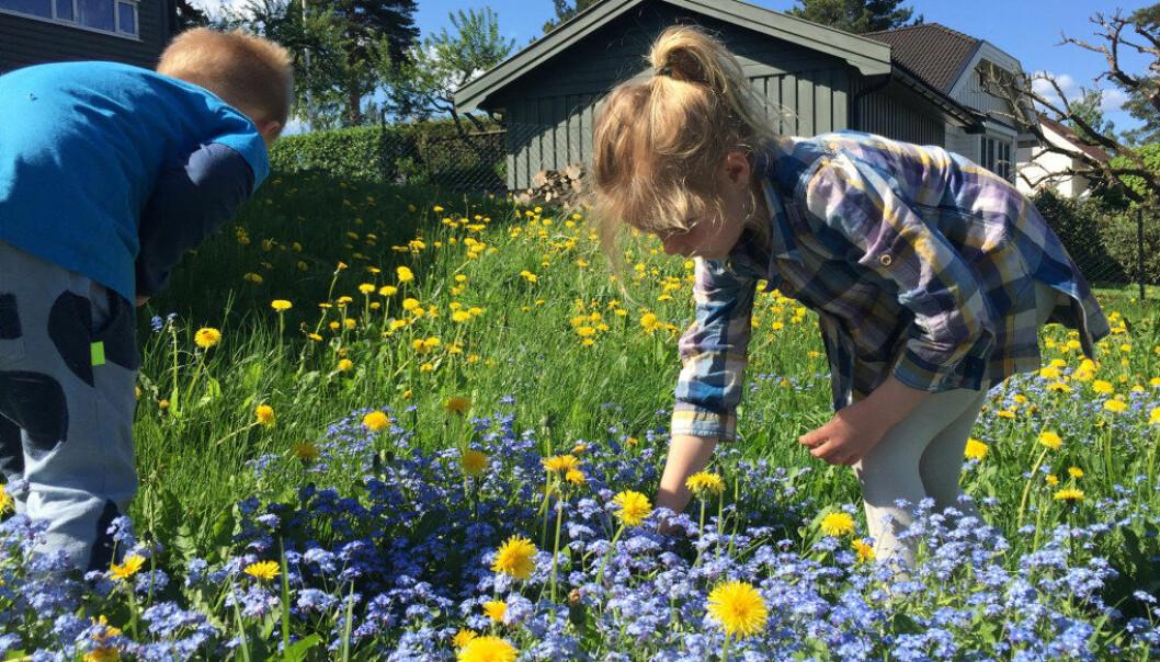 I en sektor som over år har vært underfinansiert, er det svært kritikkverdig at kommunen som barnehageeier velger å utsette innfrielse av en lovpålagt norm, skriver Gry Camilla Tingstad og Toril Kuvene Skaret. Foto: Paal Svendsen