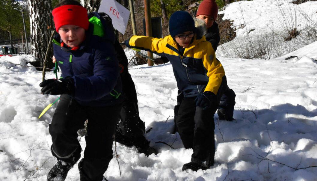I skogkanten inn mot Finnemarka, holder andre trinn ved Stenseth skole til hver bidige onsdag året rundt. Foto: Kirsten Ropeid