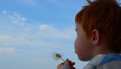 ecb2dbbb6 Et gap mellom kunnskap om Asperger og pedagogisk praksis i skolene