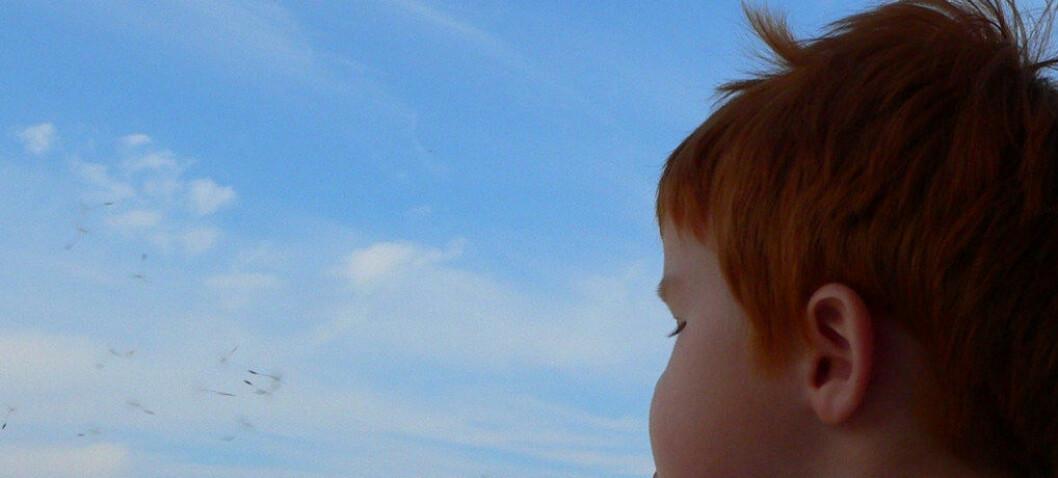 Forskningsartikkel: – Et gap mellom kunnskap om Asperger og pedagogisk praksis i skolene