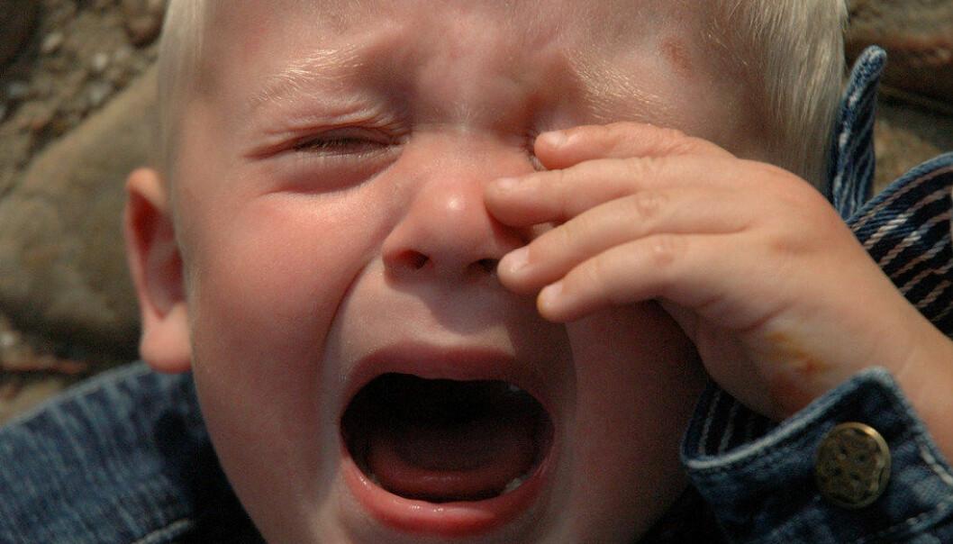 Her er noen tips til hvordan deu kan håndtere forskjellige typer gråt. Foto: T. Rolf/Free Images