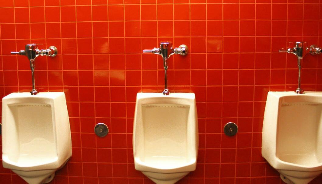 Dårlige sanitærforhold på skolenes toaletter er en av årsaken eitl at mange danske elever sier de ikke går på do i løpet av skoledagen. Dette kan føre til problemer med blære og tarm. Ill.foto: Linden Laserna,Freeimages