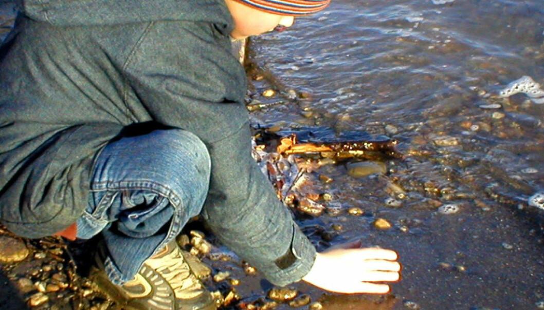 Å ta i bruk andre metoder i undervisningen for å gi barn en forståelse av at naturen og uteaktiviteter kan brukes på en god måte, er bakgrunnen for at det nå igangsettes en times fysisk aktivitet hver dag i grunnskolen. Ill.foto:  Sebastian Grässl, FreeImages