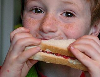 Høyre vil satse på læring framfor mat i skolen