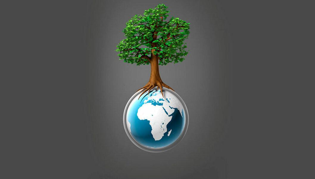 Education International deltar på årets klimatoppmøte, COP22.