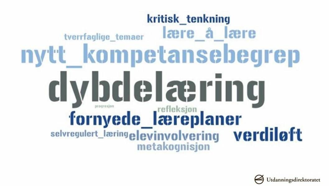 I Bergen kjørte de en omfattende prosess i arbeidet med innspillene til nye læreplaner. Foto: Skjermdump