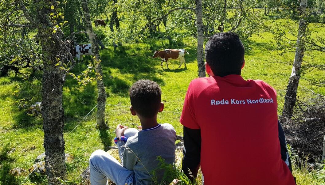 Mange foreldre kjenner på press om å dra bort på ferie. Stine Erikstad i Røde Kors sier lærere og foreldre kan fremheve overfor barna at ferie ikke trenger å betyr å reise avgårde. Her fra en av Røde Kors' ferietilbud «Ferie for alle». FOTO: Brønnøysund Røde Kors/Nordland Røde Kors