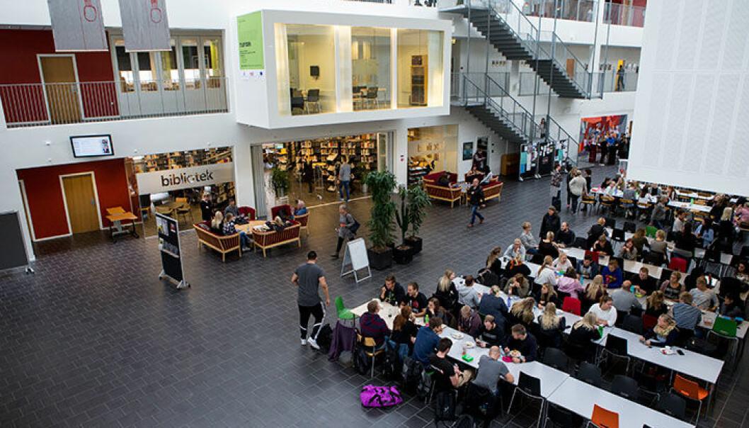 Via university college i Holstebro vest på Jylland er blant høyskolene som har en desentralisert lærerutdanning. Foto: Inge Lynggaard Hansen