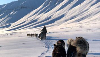 Svalbard byr på mye vakker natur. Foto: Privat