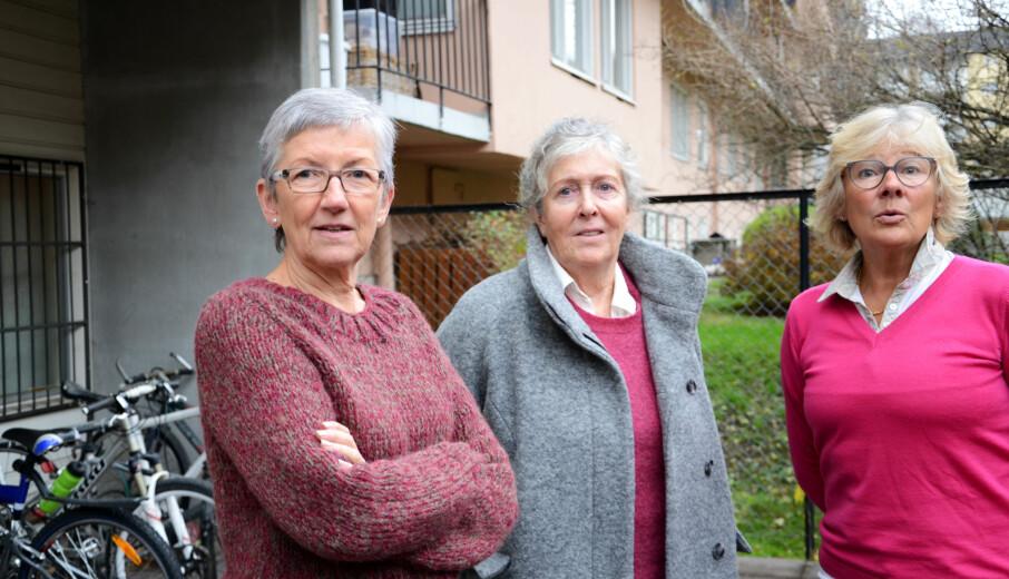 Mange desperate barn og foreldre tar kontakt med de private spesialpedagogene Elin Natås (t.v.), Marie Eines Seljebø og Liv Berit Vold. Foto: Kari Oliv Vedvik