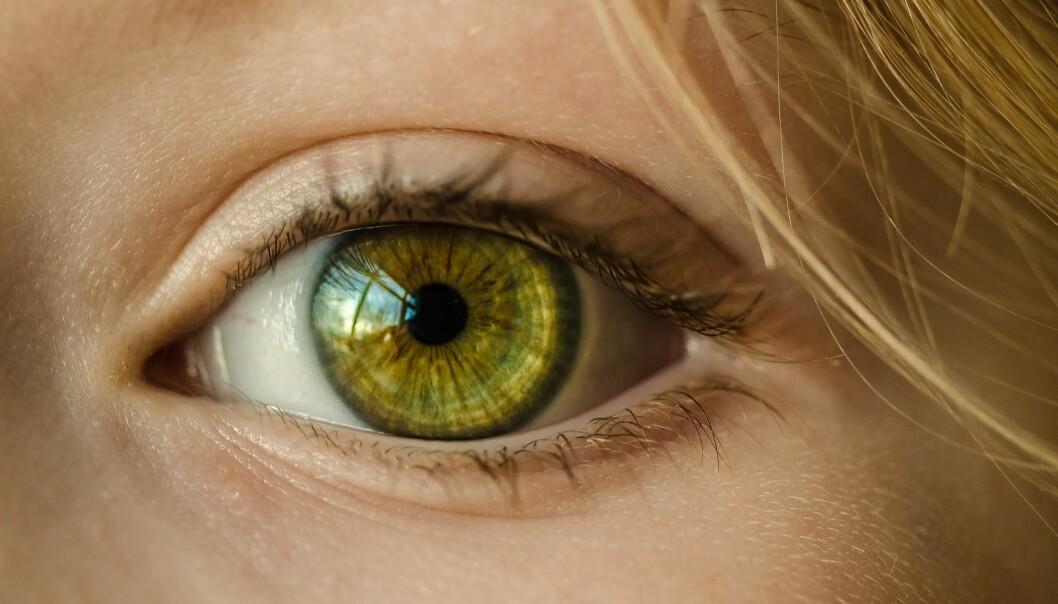 Synsvansker forekommer oftere enn vi tror, og kan være årsaken til flere vansker, også andre typer vansker enn de vi vanligvis forbinder med synet, skriver artikkelforfatterne. Foto: Pixabay