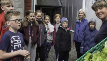 Ved Aurland skole får elevene undervisning i åkeren