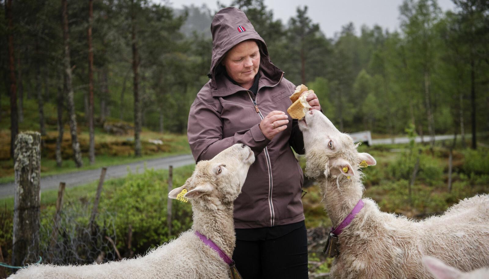 Heidi Hetland er ufør som følge av gisseldramaet i Hjelmeland barnehage for 20 år siden.