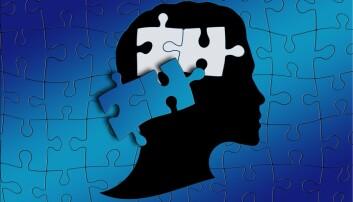 Debatt: For elever med dysleksi som normalt får bruke hjelpemidler, oppleves leseprøven som et mareritt.
