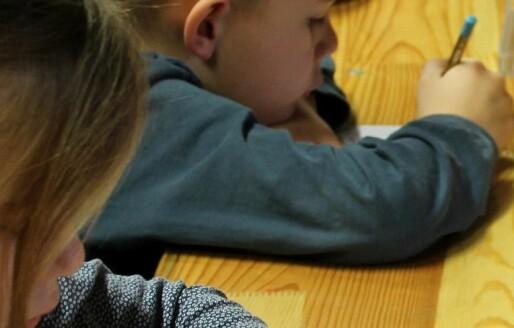 Læringsgrupper – rammer som gir rom for alle elever