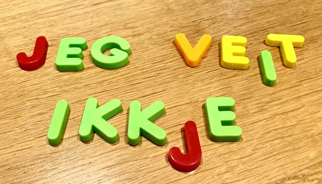 «Det blir ei røre av nynorsk og bokmål, ein eventyrleg samnorsk, umogeleg for den arme læraren å skjøne», skriv innsendaren. Ill.foto: Ståle Johnsen.