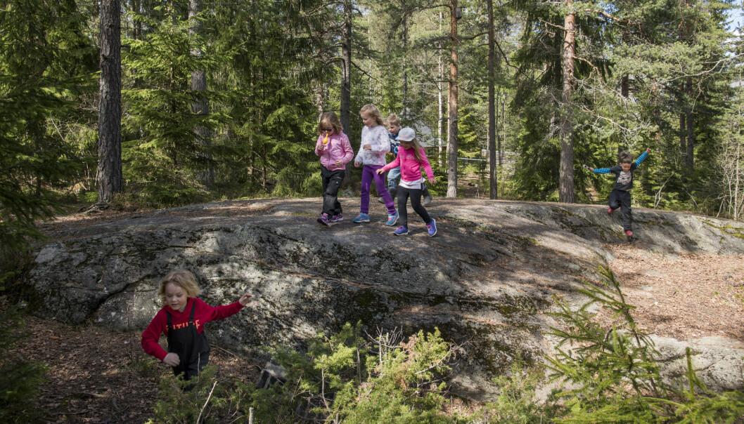 Barna i Hebekkskogen barnehage har naturen som en del av sine uteområder. Foto: Erik M. Sundt.