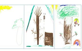 Da barna ble spurt om å tegne favorittstedet i barnehagen, tegnet de skogen, ikke lekeapparatene