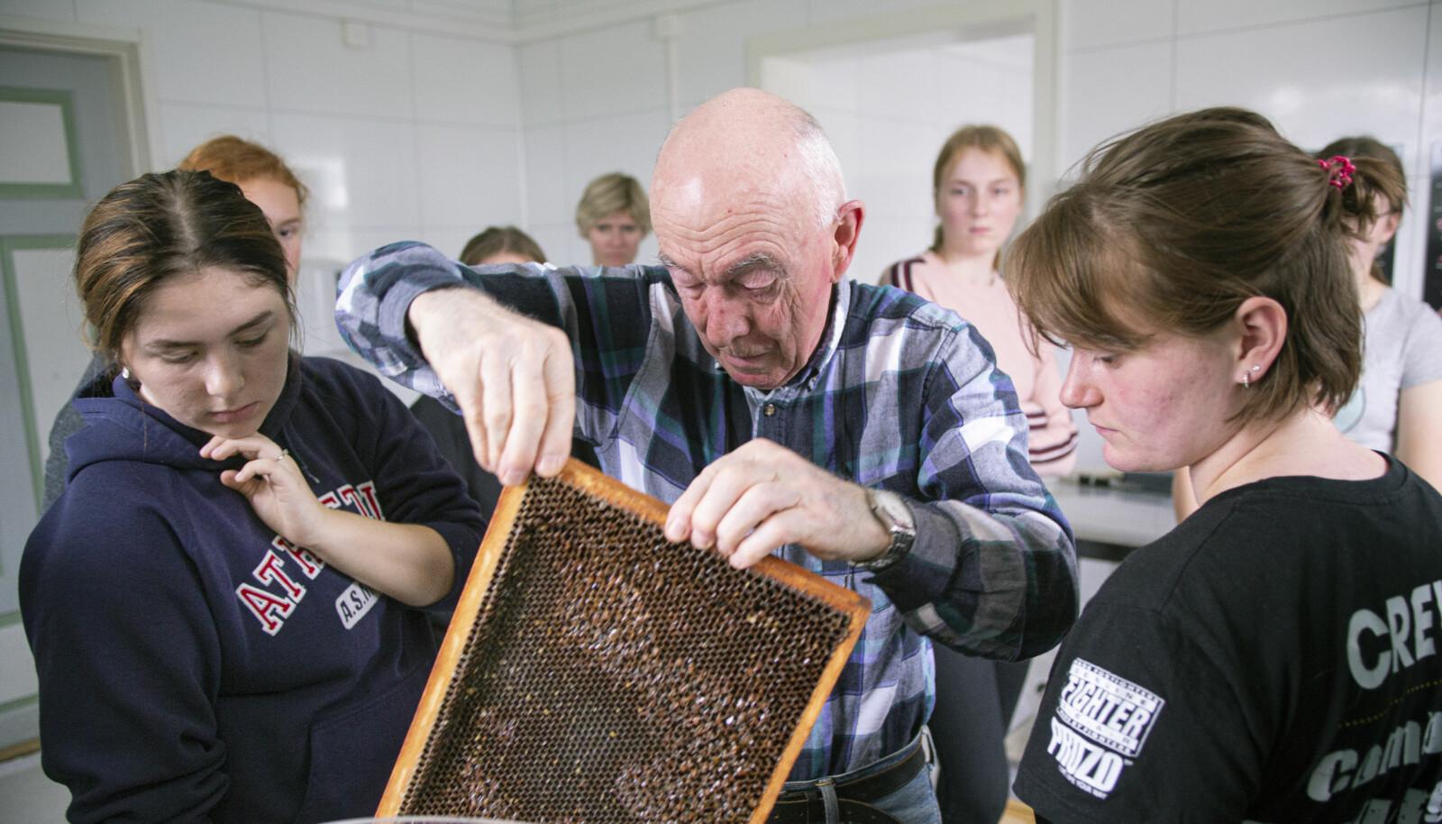 Den 80 år gamle birøkteren Ole Kristian Tønnesen er hentet inn for å dele av sin kunnskap med elevene. – Bier som husdyr vil ha avgjørende betydning for landbruket. Dyrker man rybs eller raps, vil avlingene øke med 30 prosent dersom man har bikuber tilgjengelig for bestøvning, forteller han.