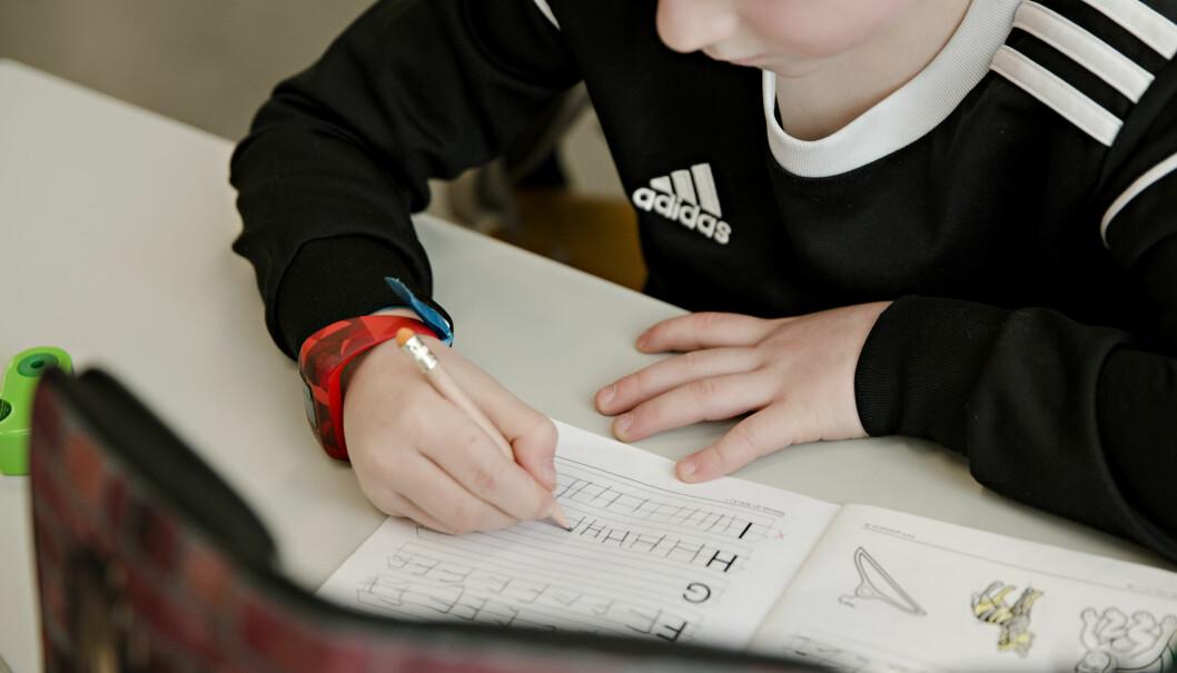 Flere utenlandske lærere søker om å få utdanningen godkjent i Norge. Foto: Kristian Ridder-Nielsen
