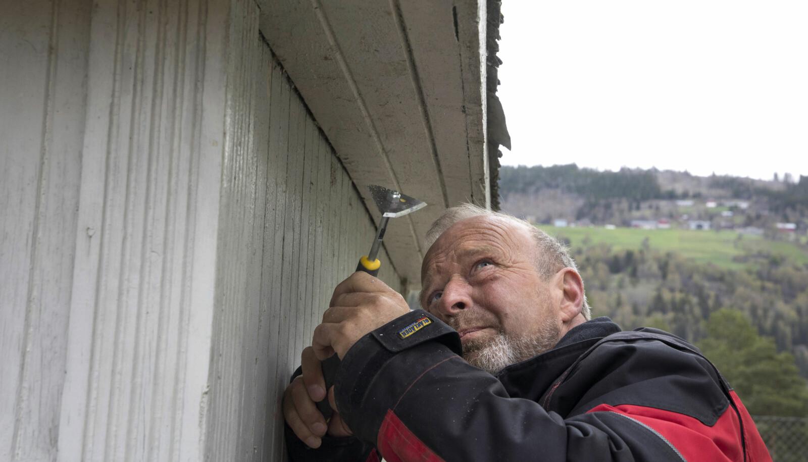 Student Knut Gunnar Melby er tømrer og jobber til daglig på Glåmdalsmuseet i Elverum. Her skraper han for å finne ut hva som var den opprinnelige fargen på den gamle bensinbua.