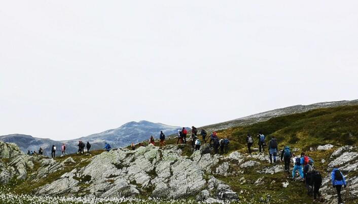 Jøldalshytta neste. Her har elevene tilbakelagt 15 km. Foto: Ingvild Onsøien Strøm