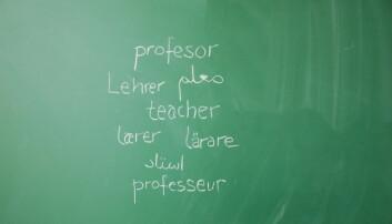 Debatt: Ja til tolærersystem, tospråklig fagopplæring og økte lærerressurser til minoritetsspråklige elever