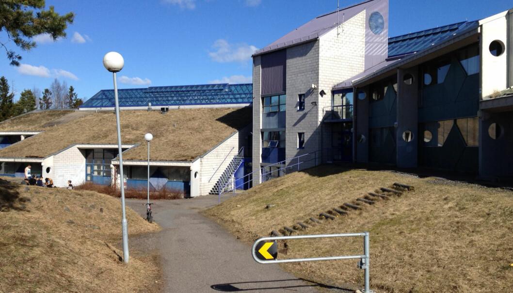 Flere elever som har sluttet ved Lofsrud skole i Oslo, har fortalt at utrygghet er årsaken, sier nylig avgått rektor Per Øyvind Hammerstad.