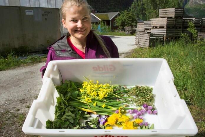 Astrid Kringeland Grønsberg (21) går vg2 og kommer fra Aurland. Her har hun vært ute og plukket ingredienser til dagens lunsjsalat. Ønsket er å kunne drive egen gård i fremtiden.